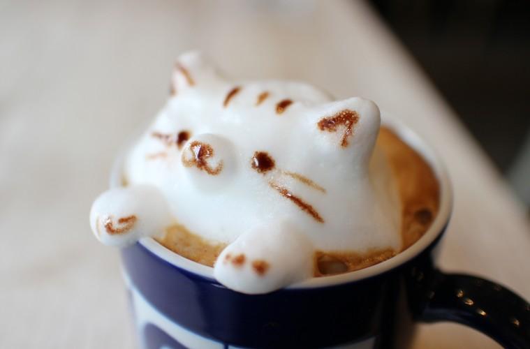 可愛すぎて飲めない??3Dラテアートが楽しめるカフェを全国からまとめてみた!
